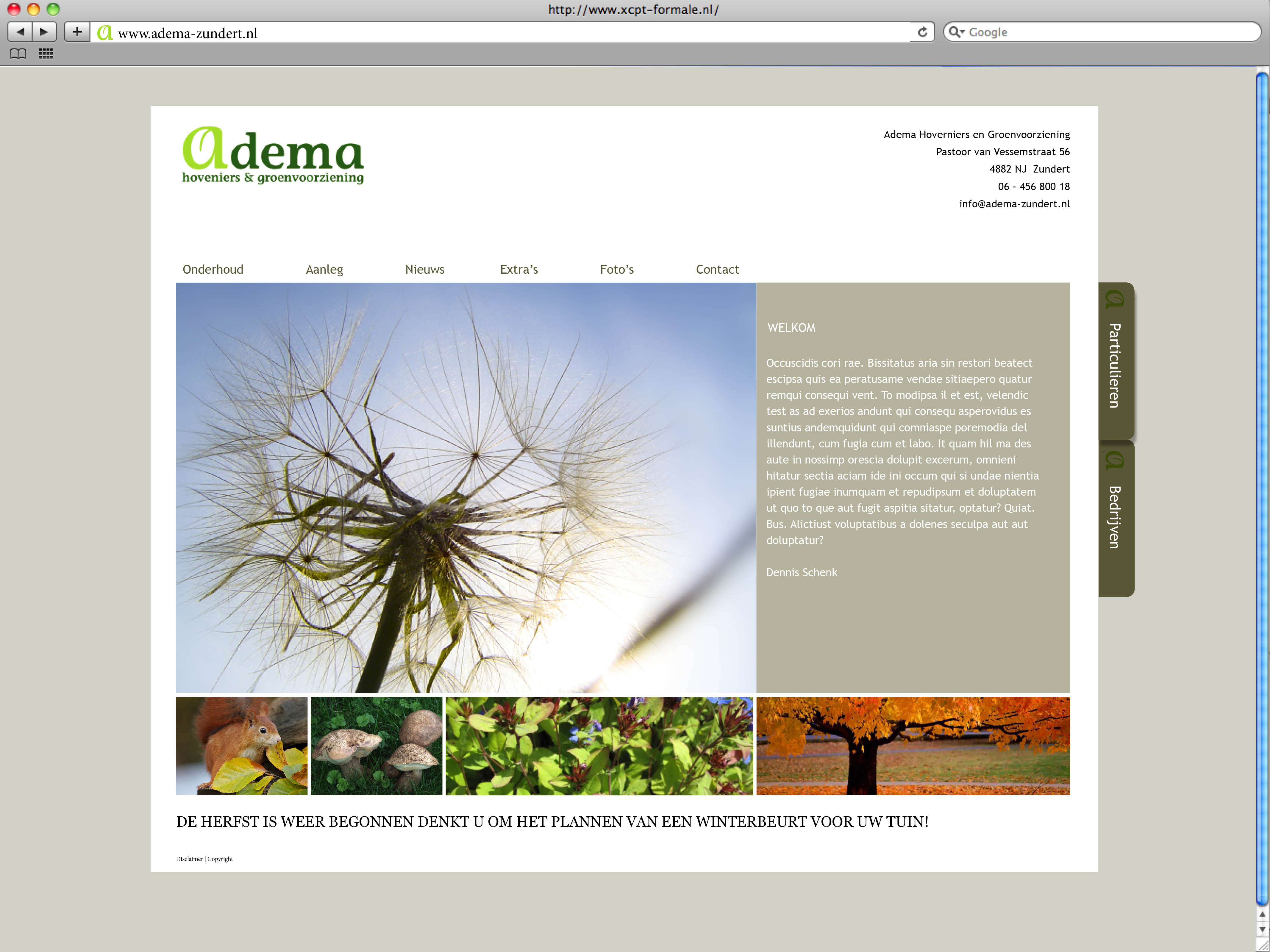Adema website